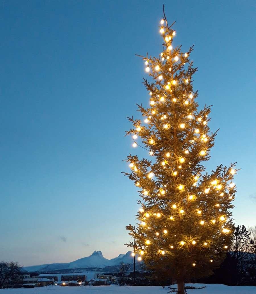 Adventstid i Bodø